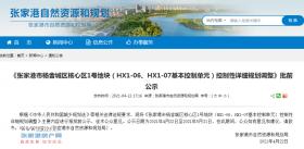 共61.35公顷!张家港市杨舍城区核心区1号地块详细规划调整公示来了