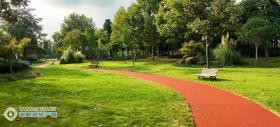 全线约1.3公里!梁丰生态园健身步道延伸段全新展现!