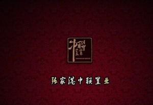 中联·铂悦