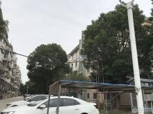 西张金谷花苑