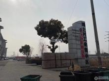 滩上村工业集中园区