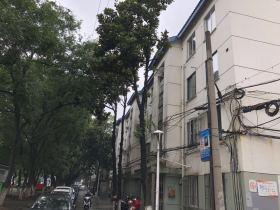 暨阳新村相册